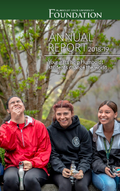 Annual Report Brochure cover