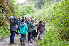 group of students on a trail looking through binoculars at birds